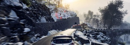 WRC 8 - Collector Edition (PS4)