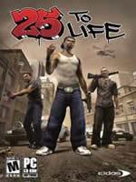 Hra pre PC 25 To Life