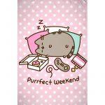Deka Pusheen - Purrfect Weekend (HRY)