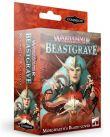 Desková hra Warhammer Underworlds: Beastgrave - Morgwaeth's Blade-Coven (rozšíření)