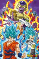 Hračka Plakát Dragon Ball Z - God Super