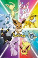 Plagát Pokémon - Eevee Evolution (HRY)
