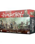 Stolová hra Warhammer Age of Sigmar: Warcry - Splintered Fang (rozšírenie)