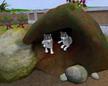 Zoo Tycoon 2: Endangered Species EN