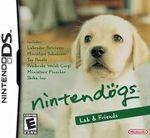 Hra pre Nintendo DS Nintendogs Labrador & Friends
