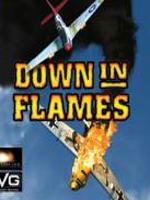 Hra pre PC Down in Flames