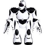 Robotick� hra�ka Mini Robosapien V2