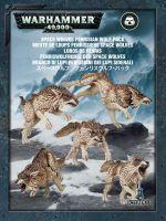 Stolní hra W40k: Space Wolves Fenrisian Wolf Pack (5 figurek)